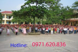 fpt-phuong-nguyen-thai-hoc