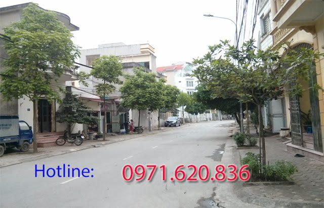 fpt-phuong-phu-thuong
